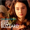 White Bird in a Blizzard: Songs from the Film