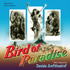 Bird Of Paradise / Lydia Bailey
