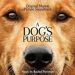 Dogs On The Movie Called A Dog S Purpose