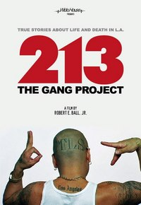 213 The Gang Project