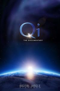Qi - The Documentary